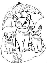 plansa de colorat animale pisici de colorat p15