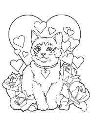 plansa de colorat animale pisici de colorat p17