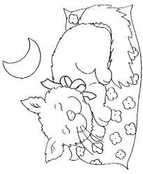 plansa de colorat animale pisici de colorat p25