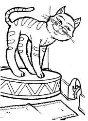plansa de colorat animale pisici de colorat p29
