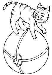 plansa de colorat animale pisici de colorat p33