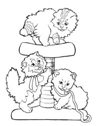 plansa de colorat animale pisici de colorat p79