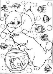 plansa de colorat animale pisici de colorat p88