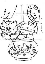 plansa de colorat animale pisici de colorat p92