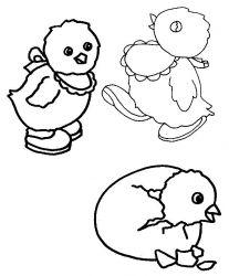 plansa de colorat animale pui de colorat p07