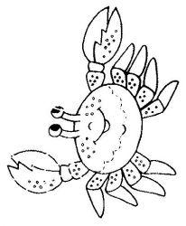 plansa de colorat animale raci de colorat p12