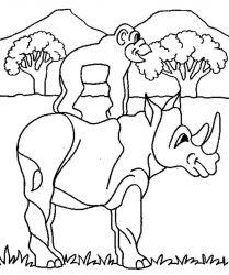 plansa de colorat animale rinoceri de colorat p11