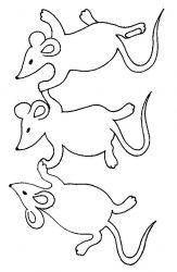 plansa de colorat animale soricei de colorat p11