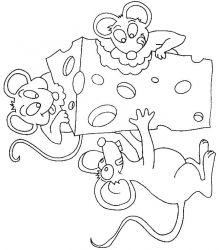 plansa de colorat animale soricei de colorat p16
