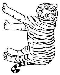 plansa de colorat animale tigri de colorat p26