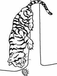 plansa de colorat animale tigri de colorat p29