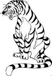plansa de colorat animale tigri de colorat p39