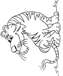 plansa de colorat animale tigri de colorat p43