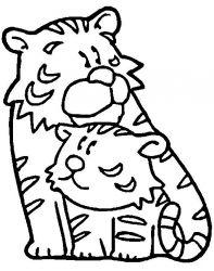 plansa de colorat animale tigri de colorat p45