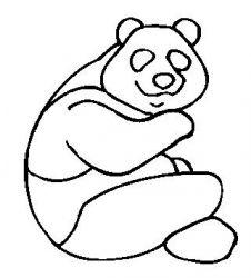 plansa de colorat animale ursi panda de colorat p02
