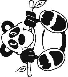 plansa de colorat animale ursi panda de colorat p03