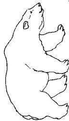 plansa de colorat animale ursuleti de colorat p111
