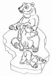 plansa de colorat animale ursuleti de colorat p121