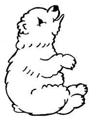 plansa de colorat animale ursuleti de colorat p123