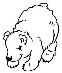 plansa de colorat animale ursuleti de colorat p125