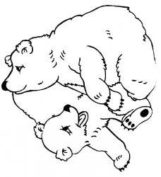plansa de colorat animale ursuleti de colorat p126