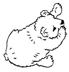 plansa de colorat animale ursuleti de colorat p132