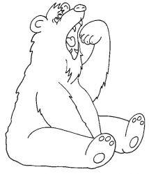 plansa de colorat animale ursuleti de colorat p50
