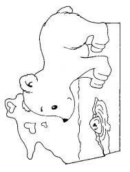 plansa de colorat animale ursuleti de colorat p76