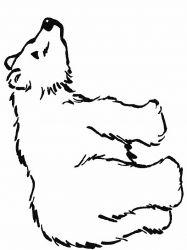 plansa de colorat animale ursuleti de colorat p93