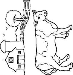 plansa de colorat animale vaci de colorat p02