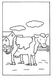 plansa de colorat animale vaci de colorat p06
