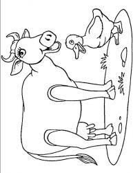 plansa de colorat animale vaci de colorat p07