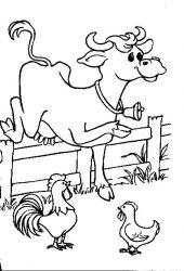 plansa de colorat animale vaci de colorat p13