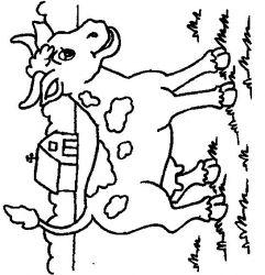 plansa de colorat animale vaci de colorat p27