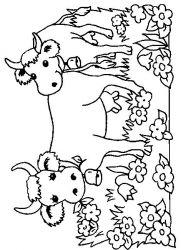 plansa de colorat animale vaci de colorat p29