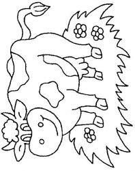 plansa de colorat animale vaci de colorat p34
