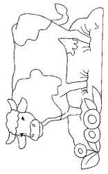 plansa de colorat animale vaci de colorat p37