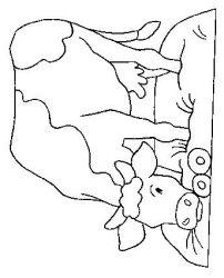 plansa de colorat animale vaci de colorat p38