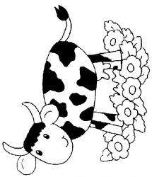 plansa de colorat animale vaci de colorat p41