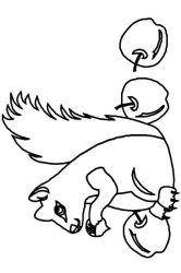 plansa de colorat animale veverite de colorat p22