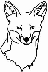 plansa de colorat animale vulpi de colorat p14