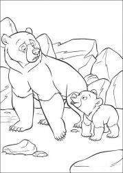 plansa de colorat brother bear de colorat p02