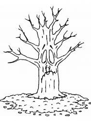 plansa de colorat copaci de colorat p02