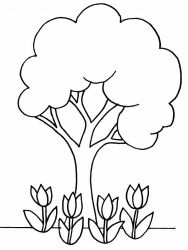 plansa de colorat copaci de colorat p05