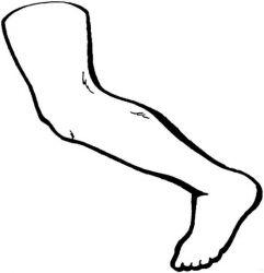 plansa de colorat corpul uman de colorat p02