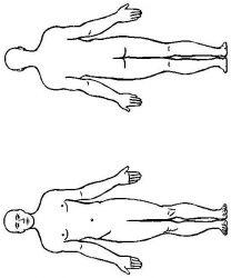 plansa de colorat corpul uman de colorat p18