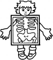 plansa de colorat corpul uman de colorat p20