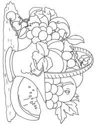 plansa de colorat cos cu fructe de colorat p11