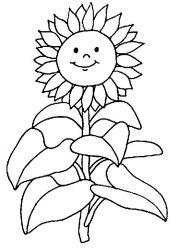 plansa de colorat floarea soarelui de colorat p01