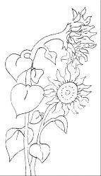 plansa de colorat floarea soarelui de colorat p03